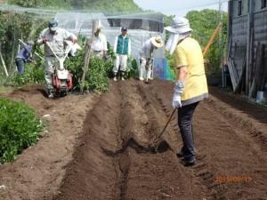 04 耕運機で畑の土を掘り起こし畝をつくる